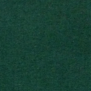 Lonita Verde Bandeira